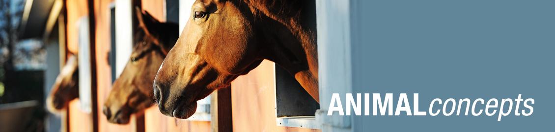 Rubrik Industriesauger zentral Industrie_AnimalConcepts_1130x270